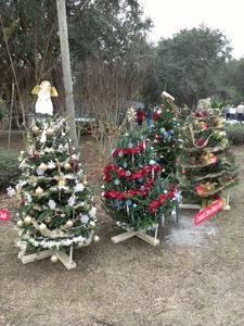 Rotary Decorated Christmas Trees