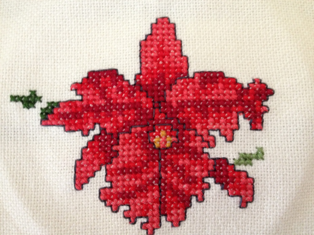Orchid Afghan